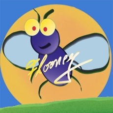 Activities of Flooney the Fly Catch me if you can