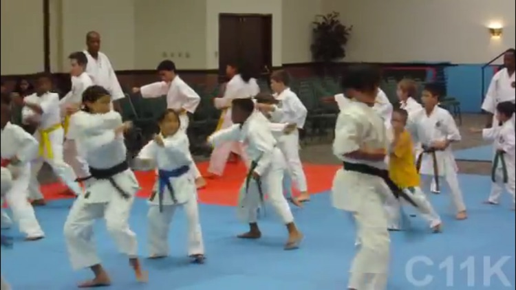 Karate For Children screenshot-2