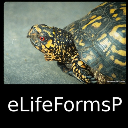 World Life Forms Plus - eLifeFormsP - A Premium Life Forms App