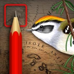 iBird Journal: Listing Birds of North America