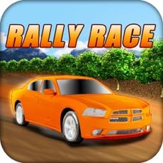 Activities of Rally Race
