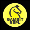 Marc Feeley - Gambit REPL artwork