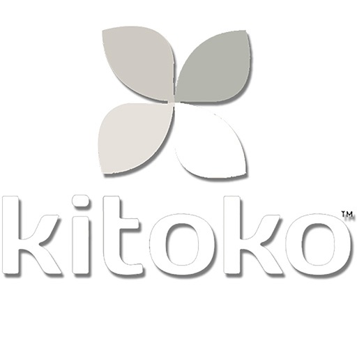 Kitoko Consulting Cam
