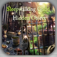 Codes for Hidden Objects:A Sleep Walking Child Hack