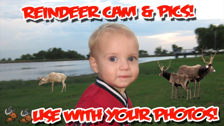 ReindeerCam - Watch Santa's Reindeer & More! screenshot-3