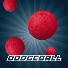 Activities of Dodgeball Multiplayer