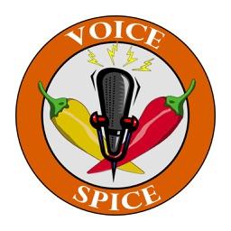 Voice Spice Online Recorder