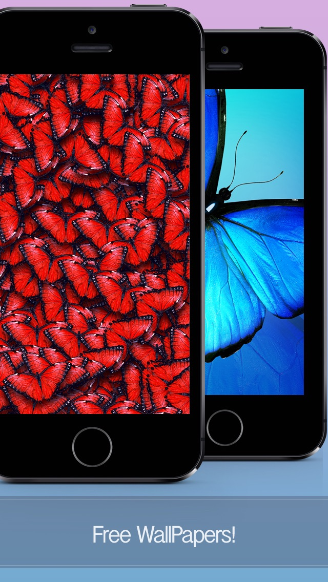 Butterfly Wallpapers Backgrounds Themes Download Free Hd Images
