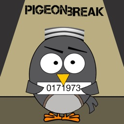 Pigeon Break