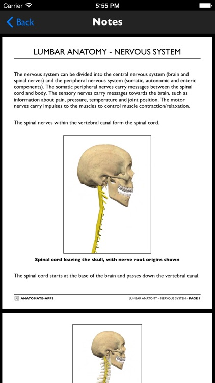 mLumbarAnatomy screenshot-4