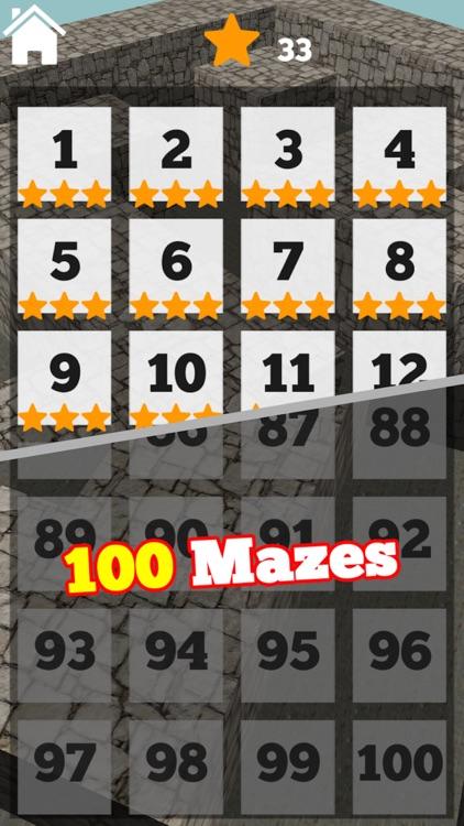 3D Maze Level 100 screenshot-3
