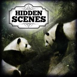 Hidden Scenes - Into the Wild