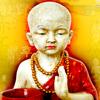 1500 Weisheiten - Lebensweisheiten und Zitate fürs Lebensglück