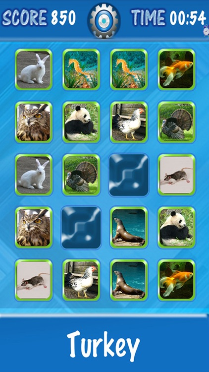 Kids Can Match - Animals , vocal memory game for children HD screenshot-4