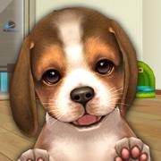My First Dog.