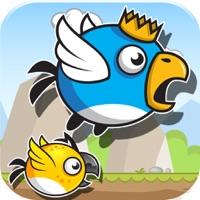 Codes for Lost Birds Adventure Hack