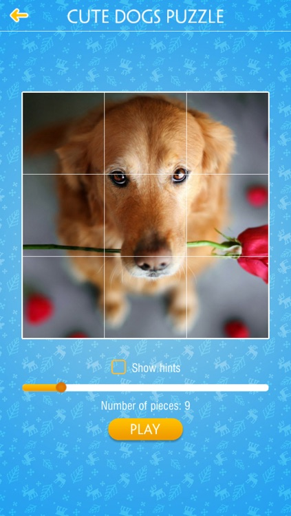 Cute Dogs Jigsaw Puzzles screenshot-3