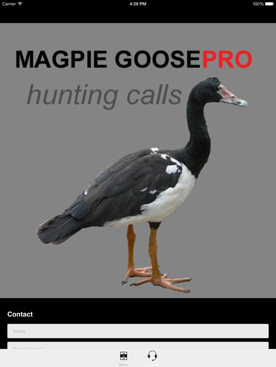 REAL Magpie Goose Calls - Hunting Calls for Magpie Geese -- (ad free) BLUETOOTH COMPATIBLE screenshot-3