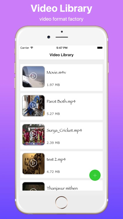 Video Converter and Audio Remover Pro