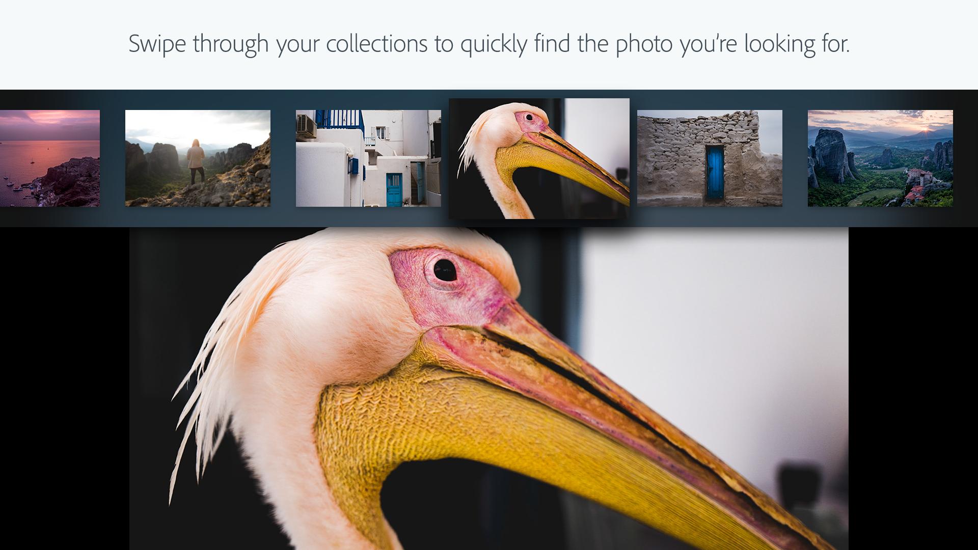Adobe Photoshop Lightroom screenshot 4