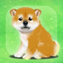 My Dog Life -Japanese Shiba Inu Edition-