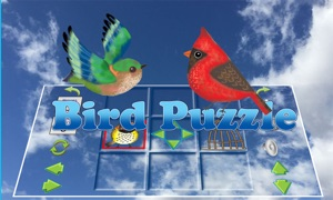 The Bird Puzzle