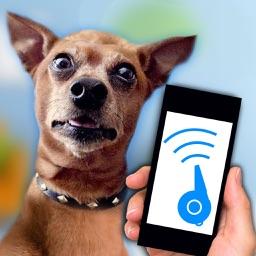 Dog Whistle Teaser Prank
