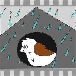 Anipaint Rain