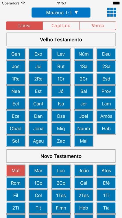 Holy Bible Audio in Portuguese screenshot-4