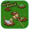 Bash Bernie