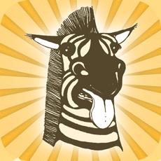 Activities of Zebra Puzzle