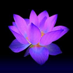 Spirituality-Mysticism