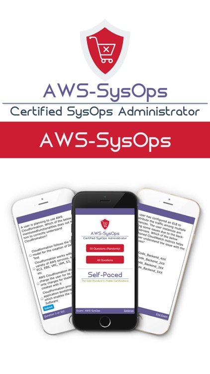 Aws Certified Sysops Administrator By Self Paced Software