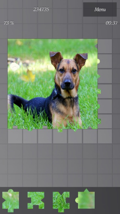 Game of Puzzles screenshot-4