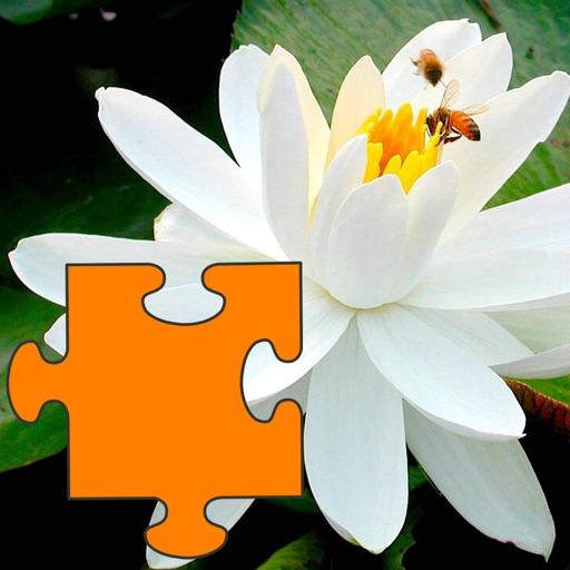 Pro Flowers Puzzle