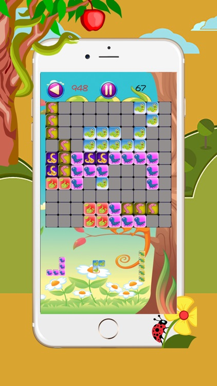 Snakes Slithering In Square Box - The New Tetroid Puzzle Game