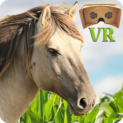 VR Horse Ride