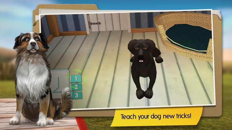 Dog Hotel screenshot-2