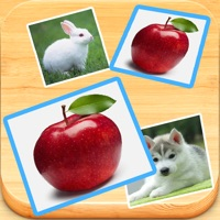 Codes for Find Double - Matching pair game with cute photos Hack