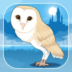 Owl Simulation Game