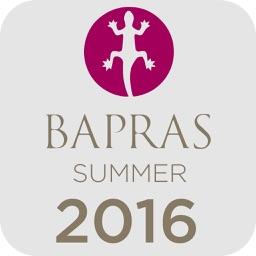 BAPRAS Summer Meeting 2016