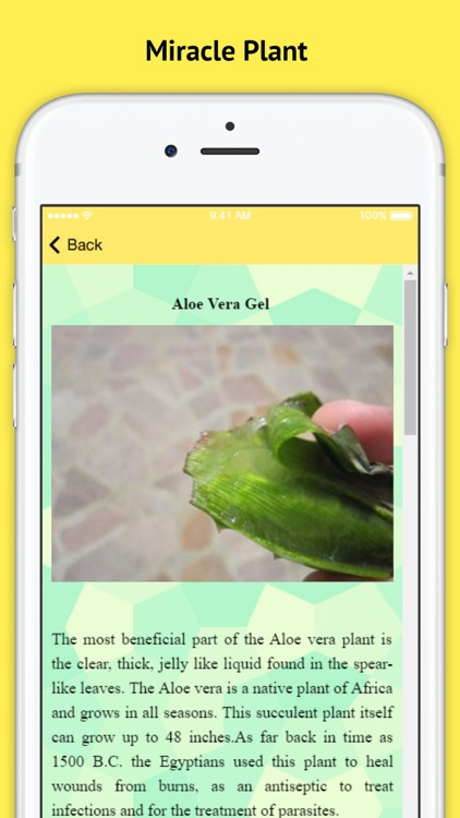 Aloe Vera - A Miracle Plant screenshot-2
