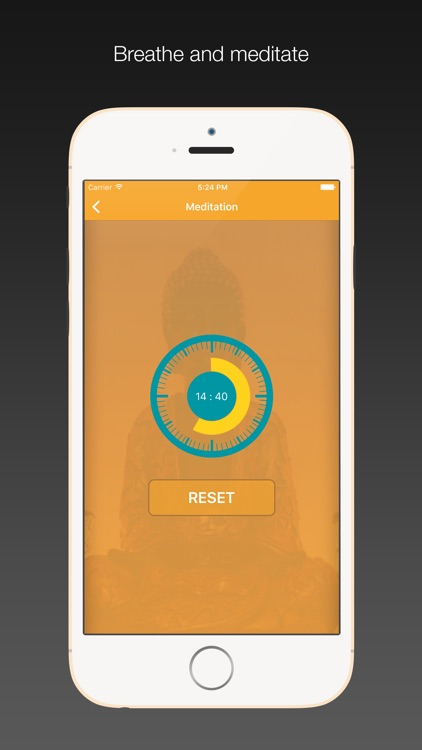 Perfect Zen - Meditation Timer with Interval bell, ambient sounds screenshot-4