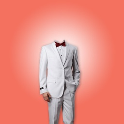 Stylish Man Suit - Photo montage with own photo or camera