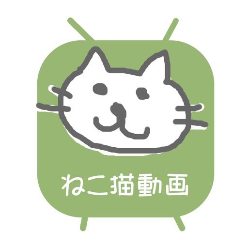 ねこ猫動画 - 猫の最新動画まとめ for YOUTUBE