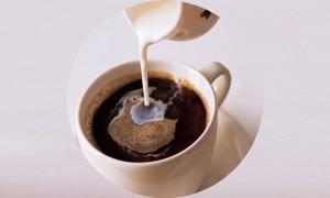 Coffee Drinks Info +