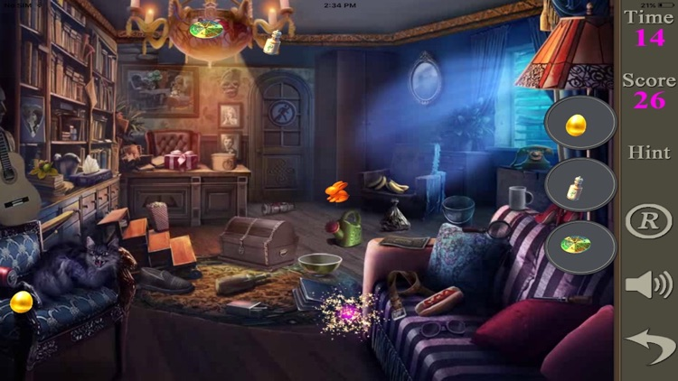 Hidden Objects Of A House Of Thieves screenshot-4