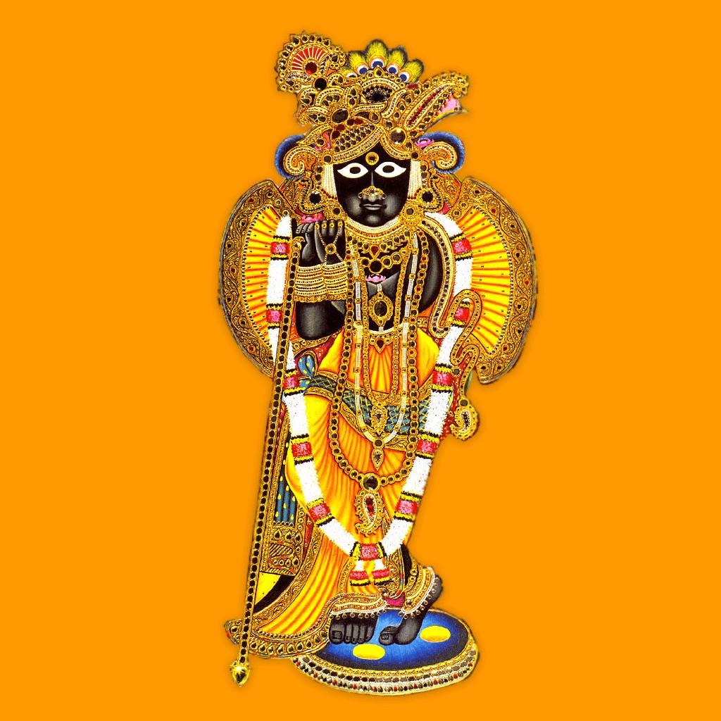 Lord Banke Bihari Virtual Temple: Worship Shri Krishn App