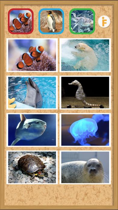 とびだす水族館のおすすめ画像2