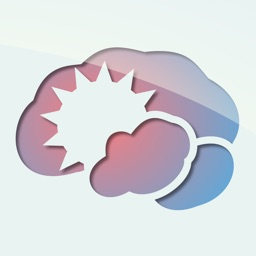 BrainRain multilingual dictionaries & thesaurus Offline